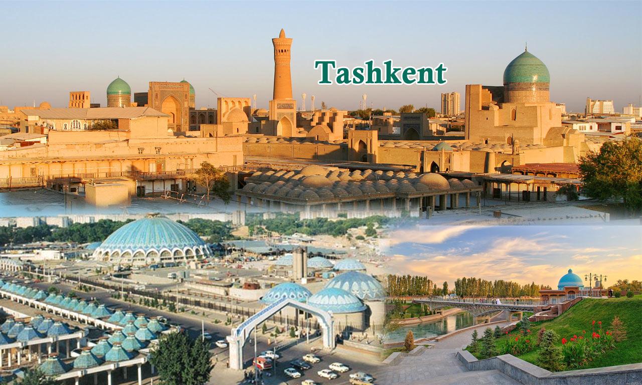Tour Package International Travel