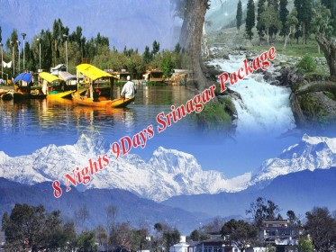 8_Nights_9_Days_Srinagar_Package.jpg