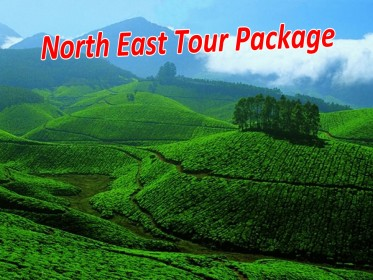 North_East_Tour_Package.jpg